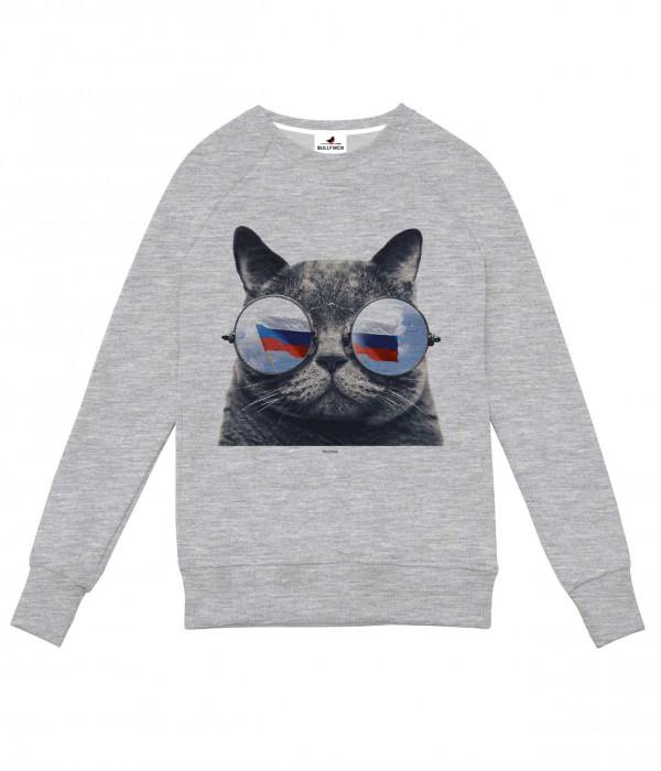 Купить Свитшот Серый Кот в Очках